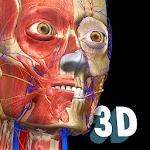Download Anatomy Learning - 3D Anatomy Atlas APK