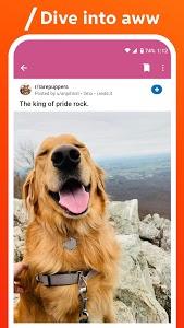Download Reddit APK